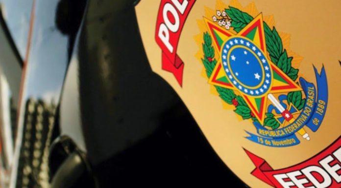 Imagem de: Operação da PF combate pornografia infantil na web em 51 cidades do Brasil