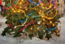 Imagem de: Seu WiFi ficou lento? A culpa pode ser das suas luzes de Natal
