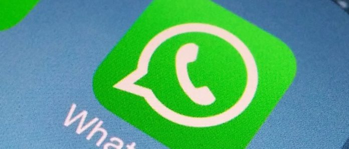 Imagem de: Festa garantida! WhatsApp vai ganhar suporte para GIFs animados