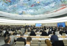 Imagem de: Bloqueio à internet é violação dos direitos humanos, diz ONU