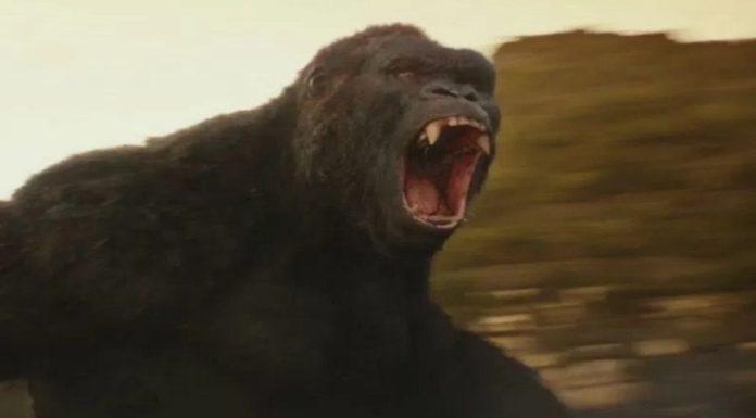 Imagem de: Agora você pode encontrar a Ilha da Caveira de King Kong no Google Maps
