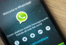 Imagem de: Finalmente! GIFs animados estão chegando ao WhatsApp