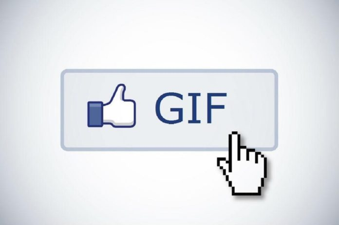 Imagem de: Facebook está com bug que impede a visualização de GIFs
