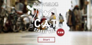 Imagem de: Cidade japonesa lança 'Google Street View para gatos'