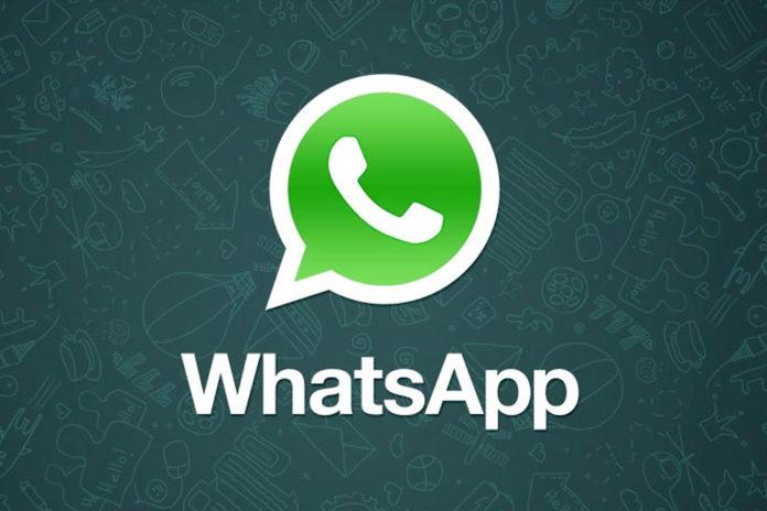 Imagem de: WhatsApp para Android ganha novos emojis em atualização