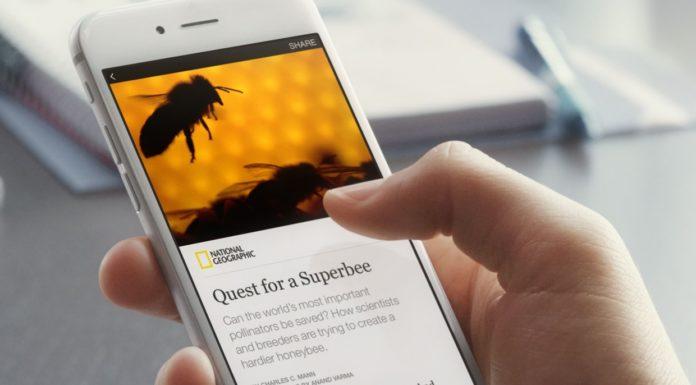 Imagem de: 'Instant Articles' do Facebook não estão rendendo lucro suficiente