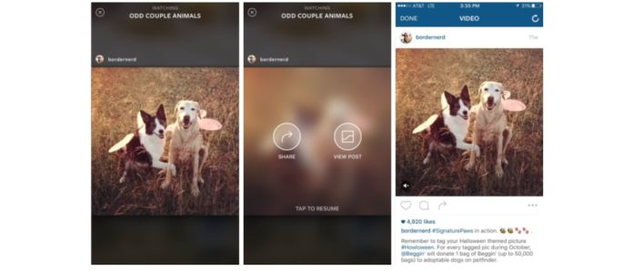 Imagem de: Spotlight Compilations: Instagram vai expandir uso da compilação de vídeos
