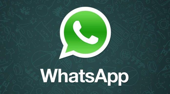 Imagem de: Atualização para WhatsApp permite adicionar GIFs pelo Gboard