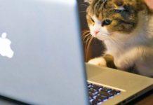 Imagem de: A internet está estimulando mais brasileiros a ler