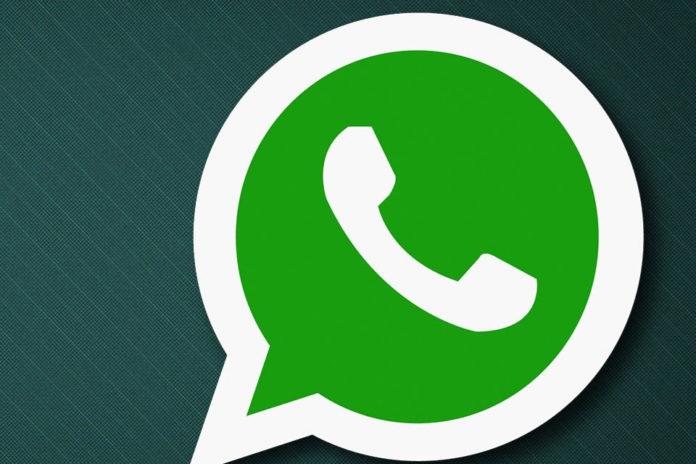 Imagem de: Você já pode enviar GIFs através da versão Beta do WhatsApp; aprenda como
