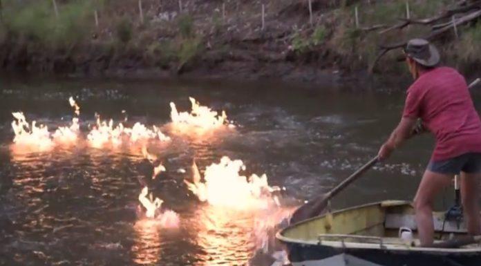 Imagem de: Australiano faz um rio pegar fogo em experimento maluco [vídeo]