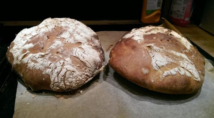 Imagem de: Blogueira prepara pão usando fungos de sua própria vagina